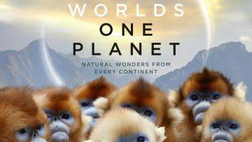 """Crítica de """"Siete mundos, un planeta"""""""
