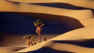 El Sahara Libio – Agua del desierto (Los Secretos de la Naturaleza)