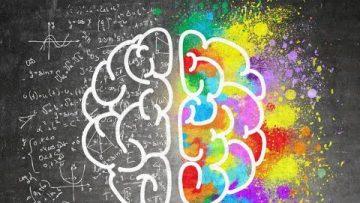 La inteligencia de nuestro cerebro