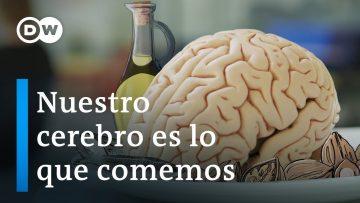 Nuestro cerebro es lo que comemos