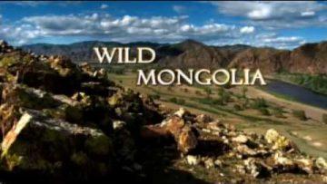 Salvaje Mongolia (Los Secretos de la Naturaleza)
