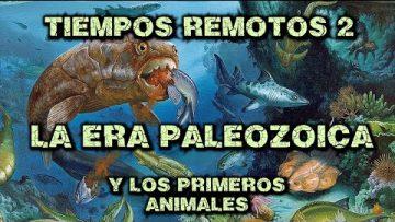 Tiempos Remotos 2 – Era Paleozoica – Los primeros animales y su evolución